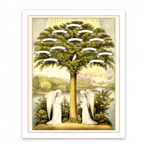 two holy angels family tree